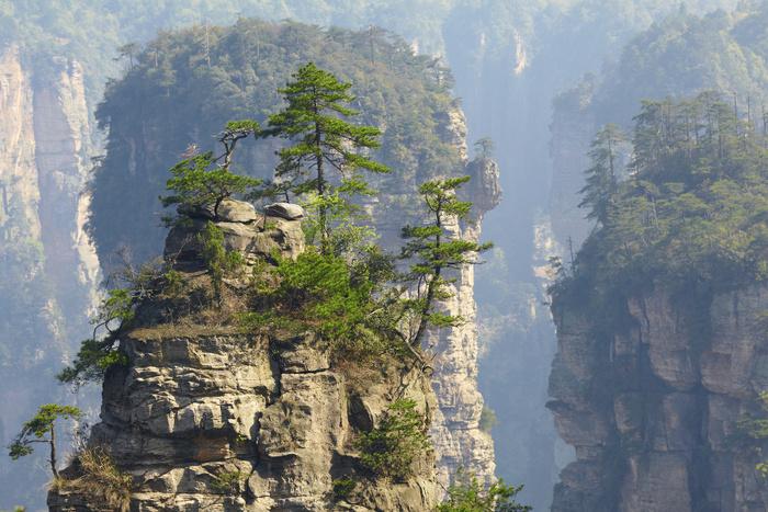 Dans Le Parc De Zhangjiajie  La forêt Chinoise Qui A Inspiré James Cameron Pour Avatar...
