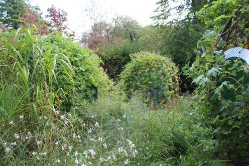 Du printemps à l'automne au festival des jardins