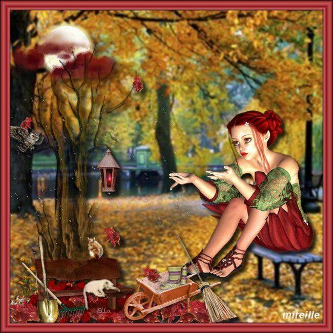 nouvelle semaine octobre rose