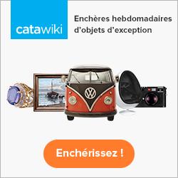Catawiki banner 250x250