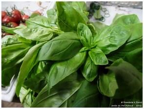 Légumes Jardin du Pré Pichaud - 2016 -