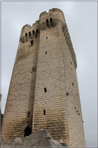 Abbaye de Montmajour Extérieurs la Tour Pons de l'Orme