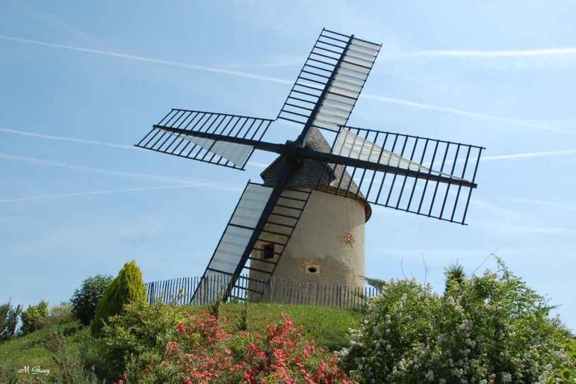 moulin-a-vent-2169.jpg