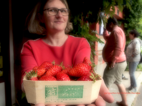 Ramener sa fraise à Champeaux