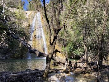 La cascade au bout du vallon gai