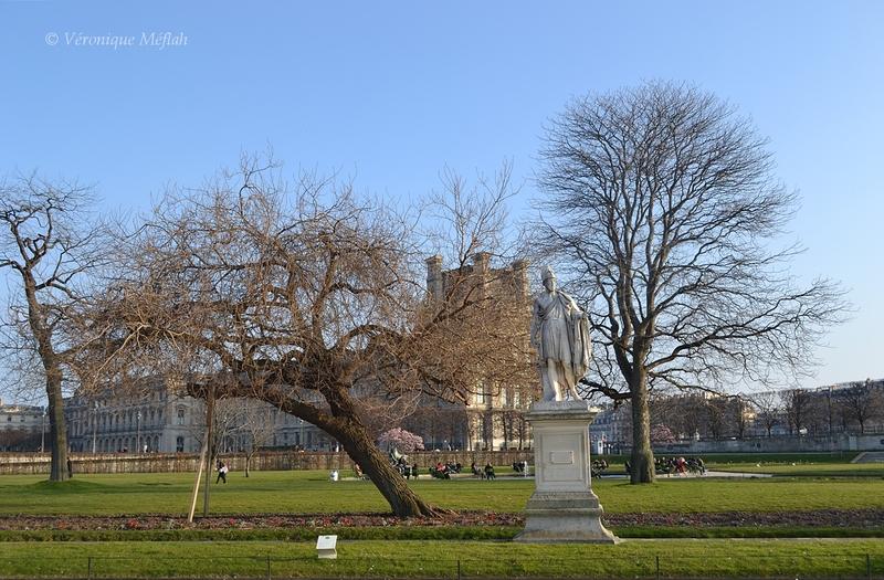 Jardin des Tuileries : un printemps bien timide ...
