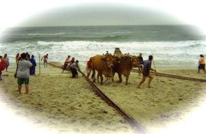 PORTUGAL 2011