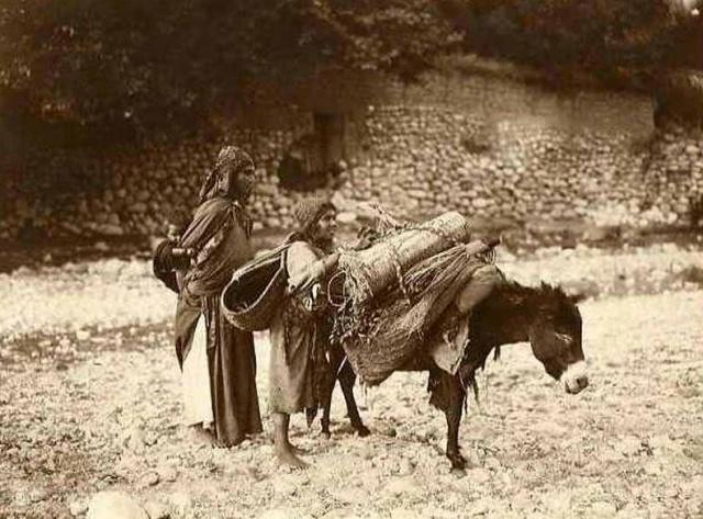 Famille et leur âne. Tunisie. 1910
