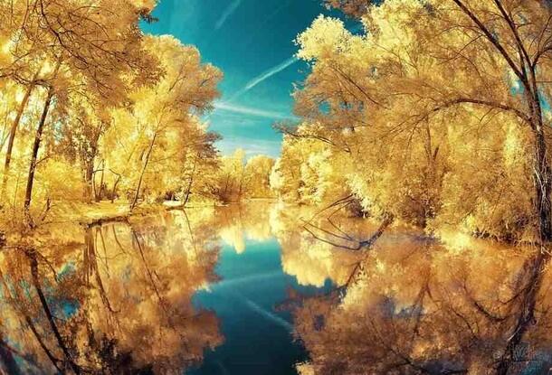 Superbe photographie infrarouge par David Keochkerian