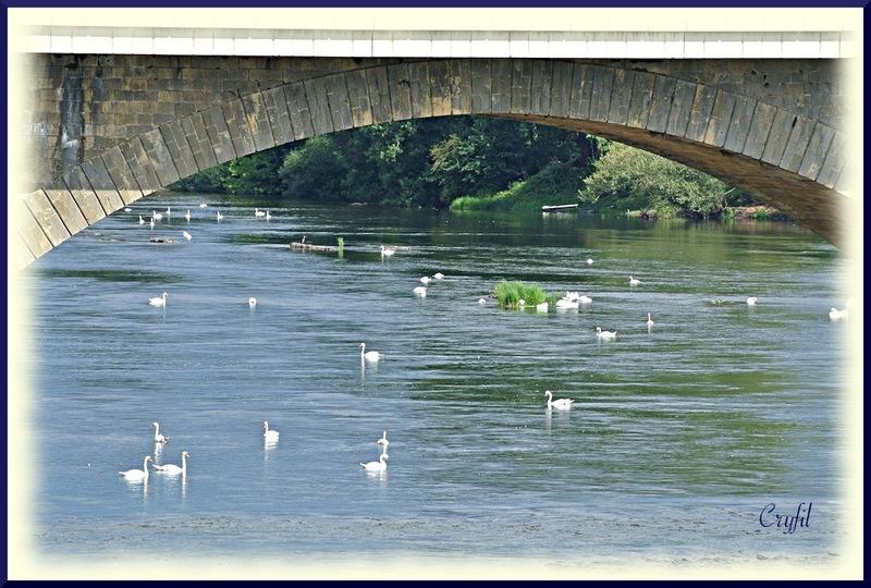 Toujours en Dordogne