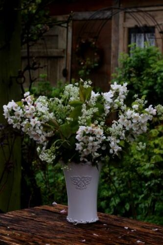 Trois bouquets sinon rien ! (3/3)