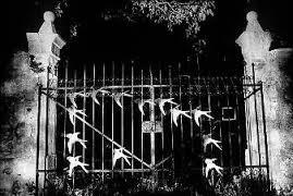 Résultats de recherche d'images pour «portail sombre»