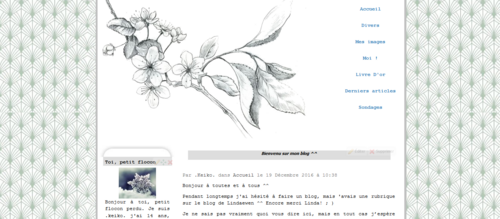 Merci Linda pour l'apparence de mon blog !!