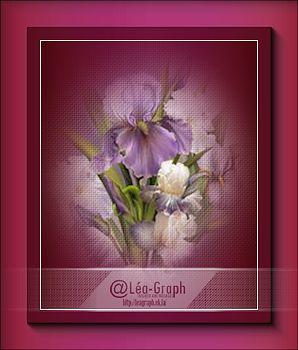 Misted fleurs 1