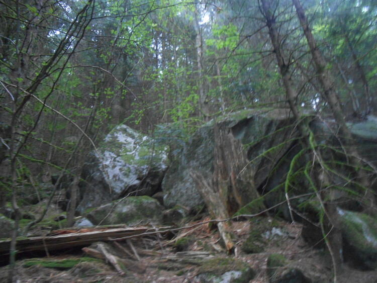 Vosges- les roches du Géhant