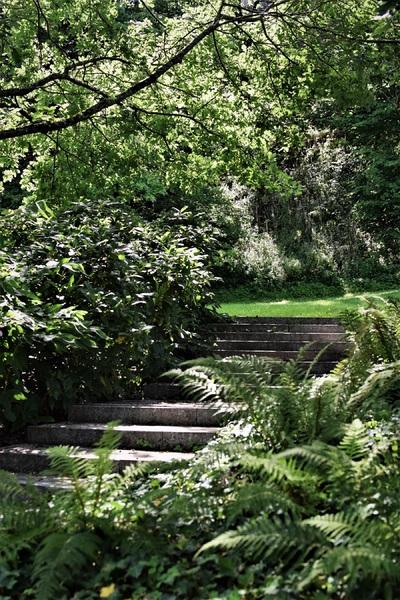 2017.08.14 Fougères, Jardin Botanique du Châtellier, Bretagne (2)