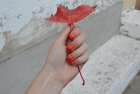 Ma garde robe en automne ♥