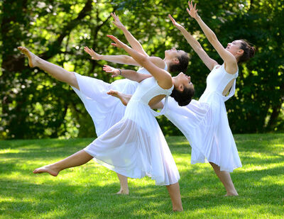 dance ballet dancers meadow dance staff