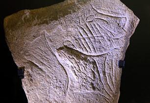 Tête humaine gravée retrouvée à la Grotte de la Marche