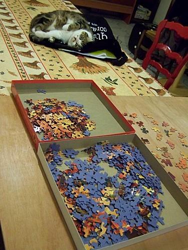 Mousse observe le puzzle 2