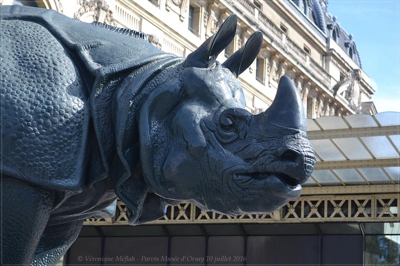 Les sculptures du parvis du Musée d'Orsay : 2) Rhinocéros