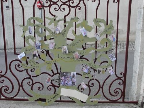 Le concours sur les arbres à la bibliothèque