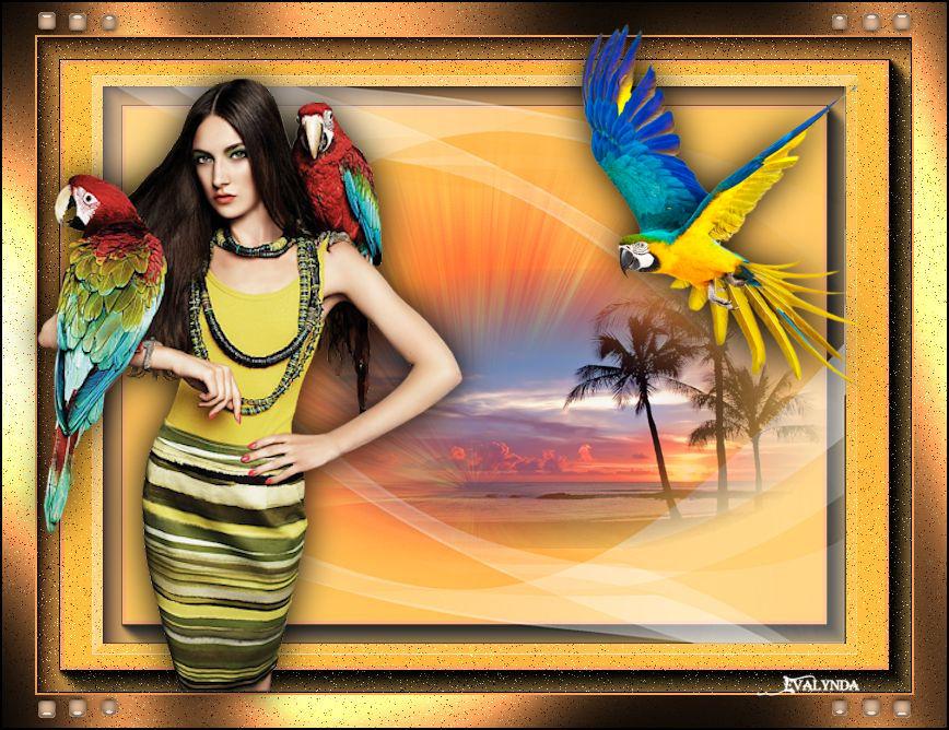Tropical (Les 13 )