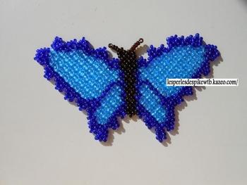 TD - Papillon Russe (3-1)