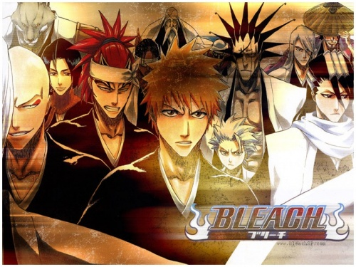 Bleach - saison 1