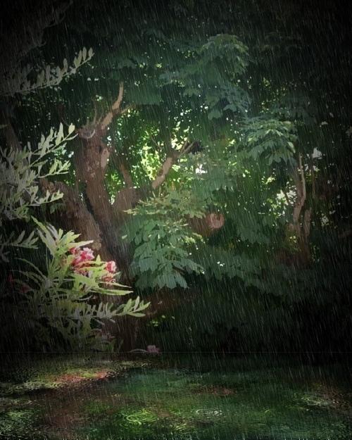 Pioggia di luce