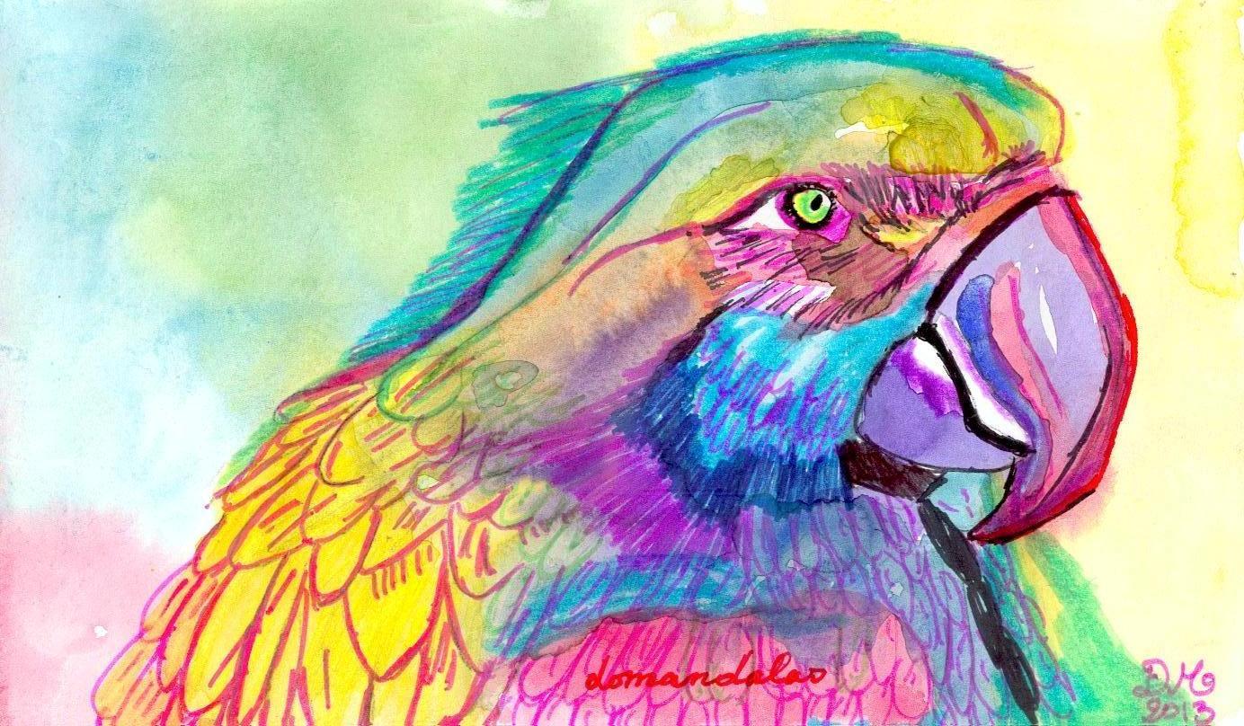 Dessins perroquets et ara domandalas - Dessins de perroquets ...