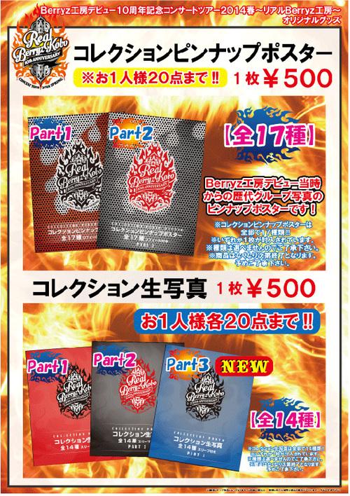 Goodies ~ Berryz Kobo Debut 10th Anniversary Concert Tour 2014 Haru ~Real Berryz Kobo~  PART 2