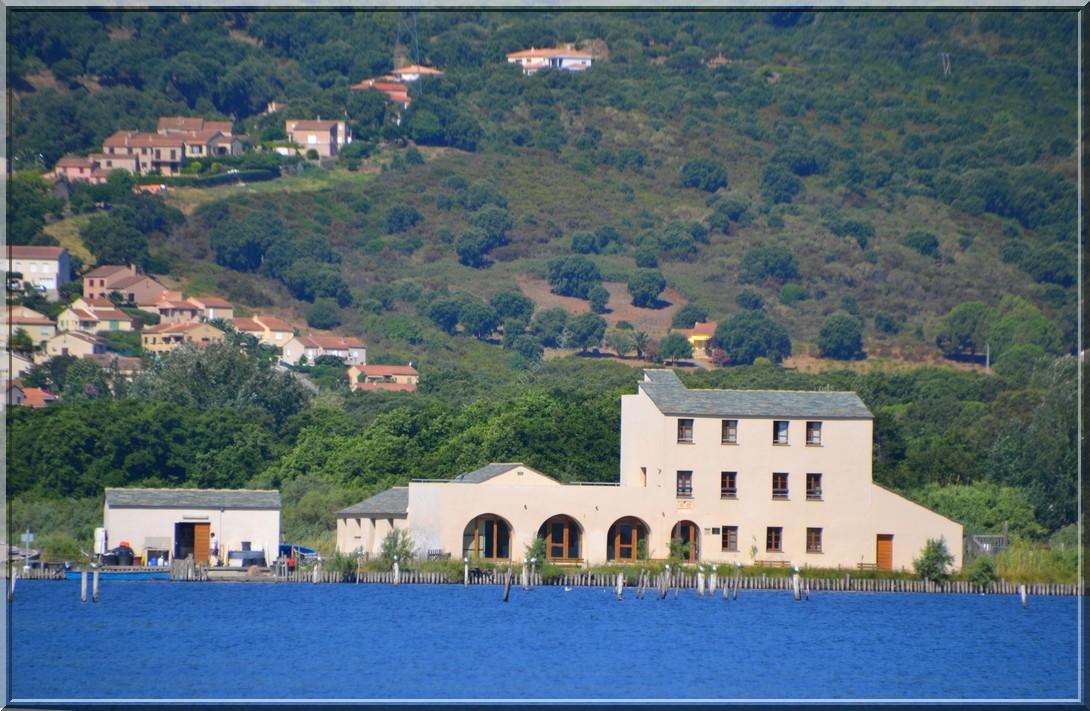 Etang de Biguglia - Corse