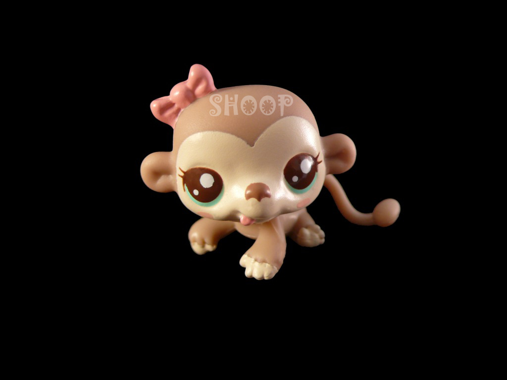LPS 2559
