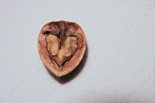 La noix contient une excellente concentration de minéraux et d'oligoéléments. Elle est riche en potassium (690 mg), en phosphore (510 mg) et en magnésium (130 mg).