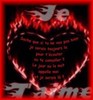 Poème Le Pélican