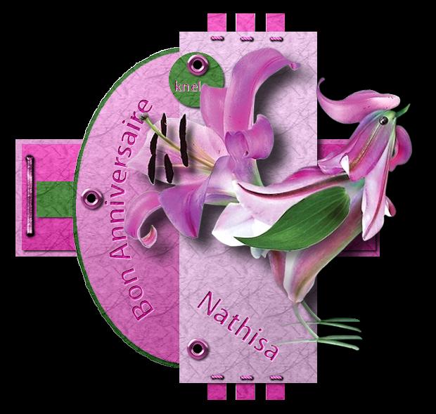 """""""Anniversaire de Nathisa"""""""