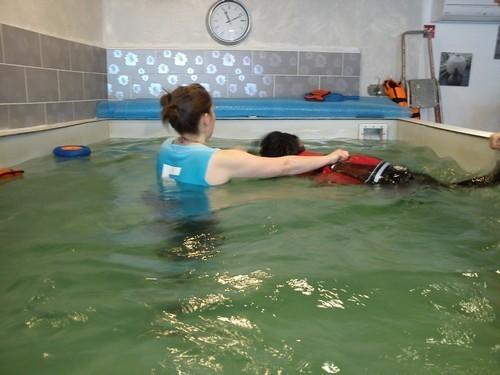 ermes-piscine2.jpg