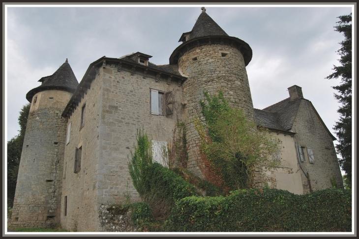 Le chateau - La Chapelle-Saint-Géraud