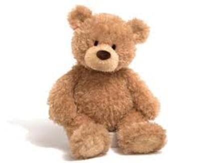 Leo, l'homme qui a vu l'ours !