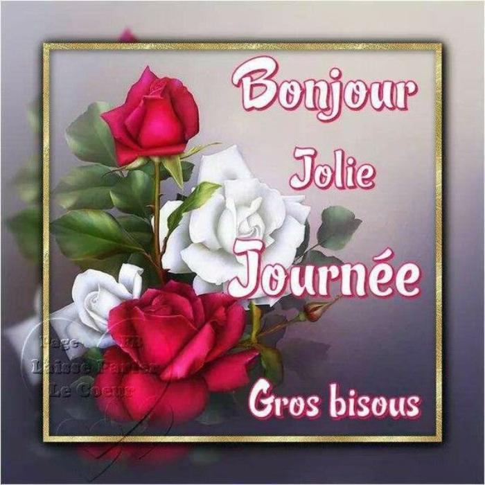 BONJOUR  MES AMIS  NOUS  OMMES   LE  JEUDI  25   JANVIER    2019   C  EST  LA  ST FRANCOIS  DE  SALES...