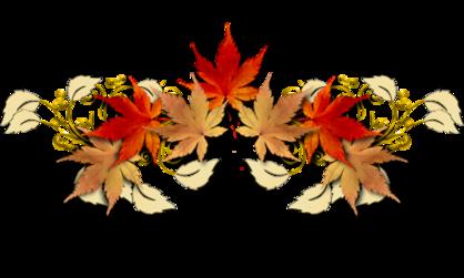 La balade du cygne au parc Val'es fleur ( ma région )