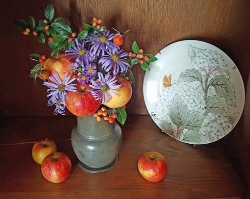 Journées des Plantes de Chantilly, automne 2017 : les résultat du concours sont là...