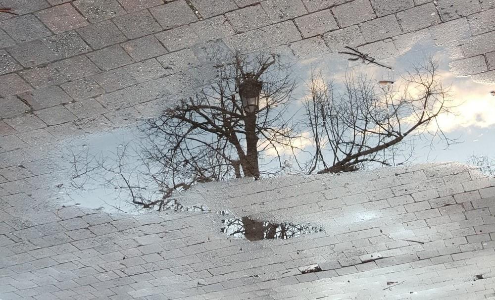 Reflets après la pluie...