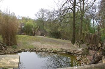 Zoo Osnabruck d50 2012 184