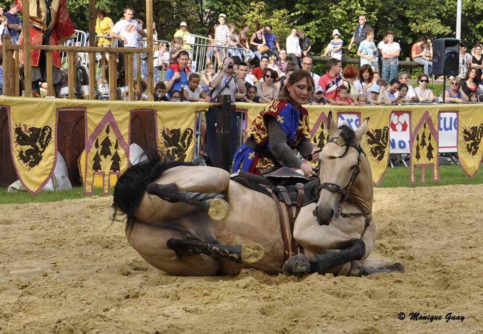 Adresse aux tournois et chevaux en exercice