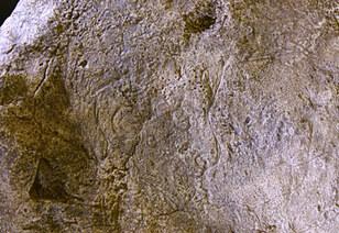 Tête humaine - Grotte de la marche