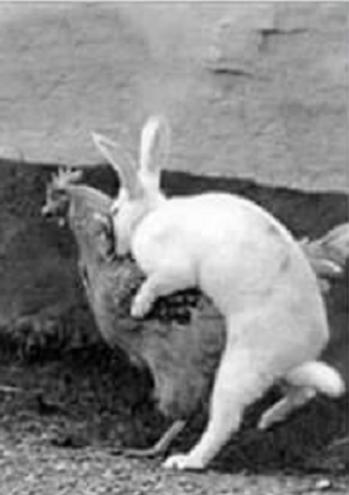 Comment furent crées les oeufs de Pâques
