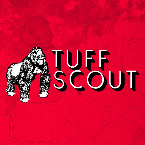 Various Artists - Tuff Scout Records (2017) [Reggae]