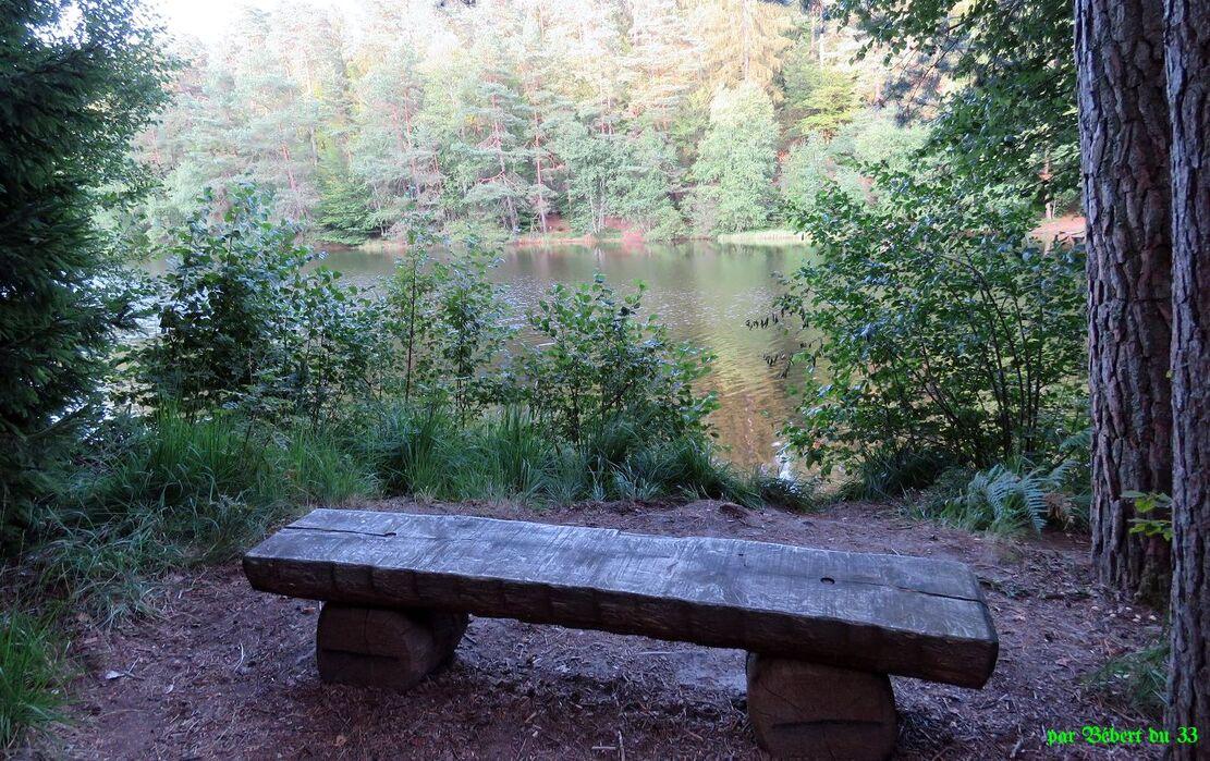 le lac de Bitche en Moselle